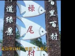 海南文明生态村纪录-禄尾村